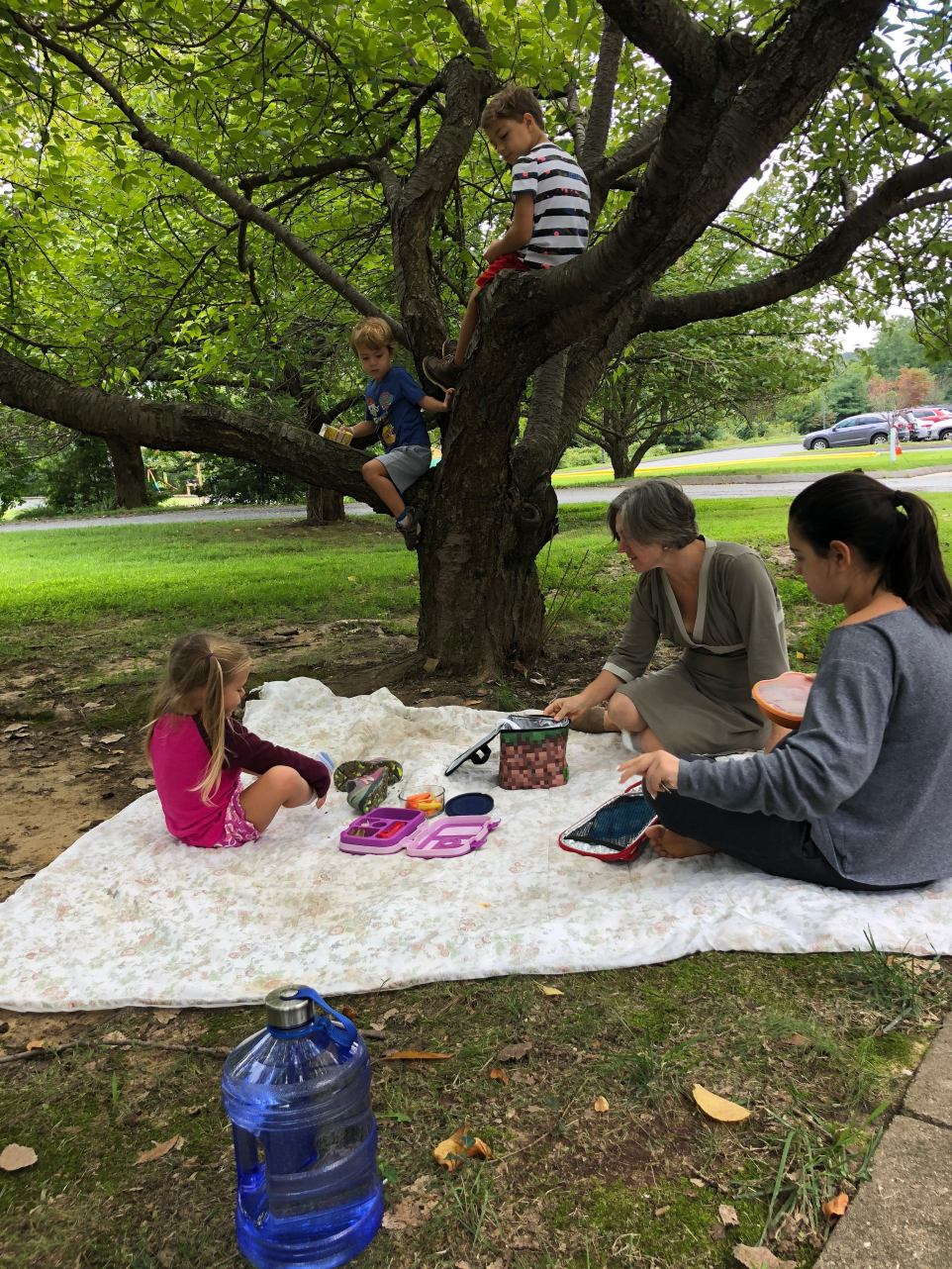 GFT picnic lunch.jpg